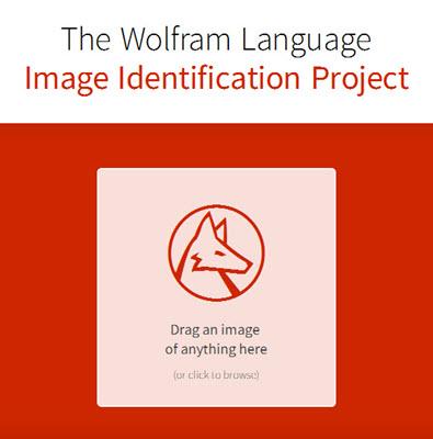 imageidentify